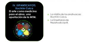 Eje4 MedicinaTradicional