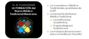 Eje6 MedicinaTradicional