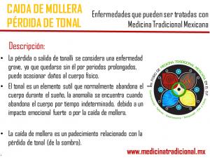 Mollera1_MedicinaTradicional