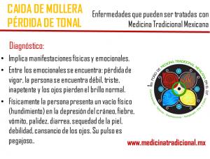 mollera2_medicinatradicional