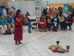 Medicina Tradicional Mexicana (48)