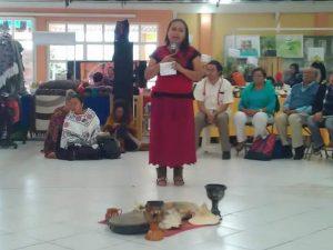 Medicina Tradicional Mexicana (50)