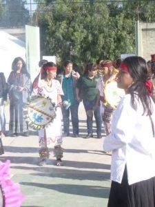 Medicina Tradicional Mexicana (92)